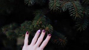 Unghie natalizie – Nail art strumenti utili